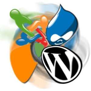 Choose WordPress For Your CMS website
